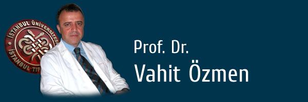Prof. Dr. Vahit Özmen